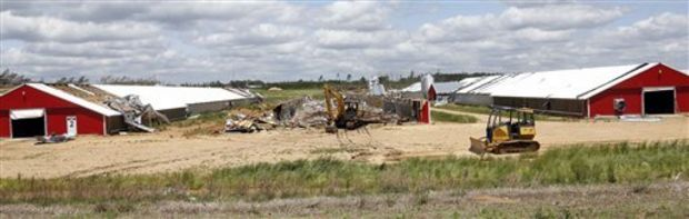 hicken houses remain on both sides of one that was flattened at Pine Ridge Farm by a tornado Monday in Noxapater, Miss., as seen in this photograph taken Wednesday, April 30, 2014. Several poultry farms were damaged by a tornado on Monday. (AP Photo/Rogelio V. Solis)