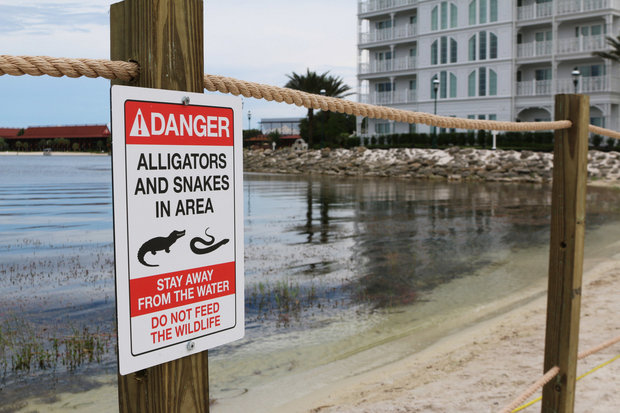 In this Friday, June, 17, 2016 file photo released by Walt Disney World Resort, a new sign is seen posted on a beach outside a hotel at a Walt Disney World resort in Lake Buena Vista, Fla., after a 2-year-old Nebraska boy killed by an alligator at Disney World. Matt Graves, the father of the toddler killed by an alligator at Disney on June 14, told rescue officials two alligators were involved in the attack, according to emails from the Reedy Creek Fire Department. (Walt Disney World Resort via AP, File)